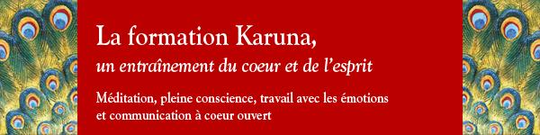 Formation Karuna